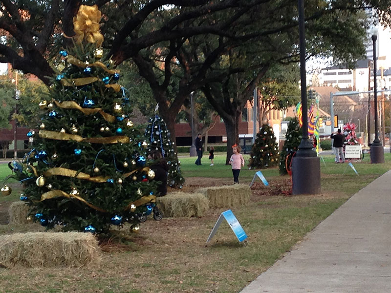 Holiday Trees – Teams are Forming